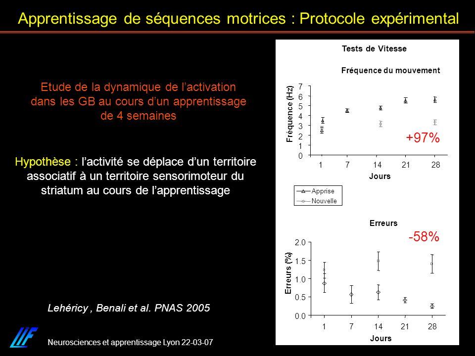 Neurosciences et apprentissage Lyon 22-03-07 Hypothèse : lactivité se déplace dun territoire associatif à un territoire sensorimoteur du striatum au c