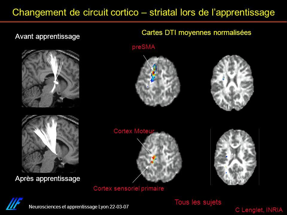 Neurosciences et apprentissage Lyon 22-03-07 Cartes DTI moyennes normalisées Tous les sujets Changement de circuit cortico – striatal lors de lapprent