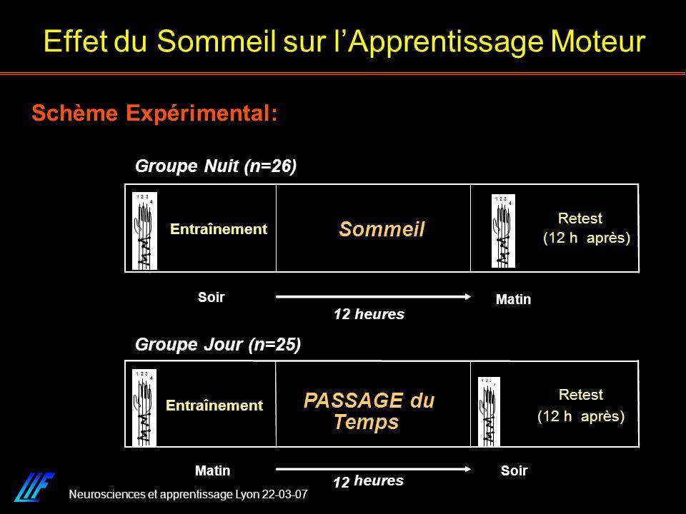Neurosciences et apprentissage Lyon 22-03-07 Schème Expérimental: Effet du Sommeil sur lApprentissage Moteur (12 h après) Retest Sommeil Entraînement