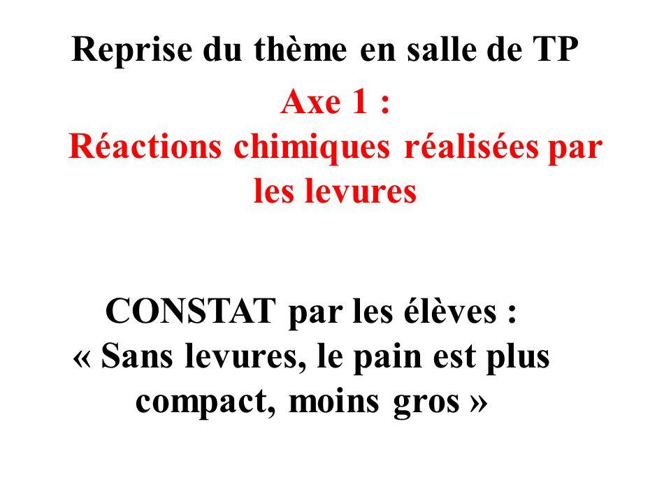 Reprise du thème en salle de TP Axe 1 : Réactions chimiques réalisées par les levures CONSTAT par les élèves : « Sans levures, le pain est plus compact, moins gros »