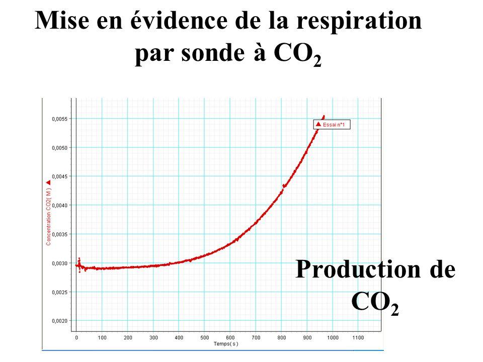 Mise en évidence de la respiration par sonde à CO 2 Production de CO 2