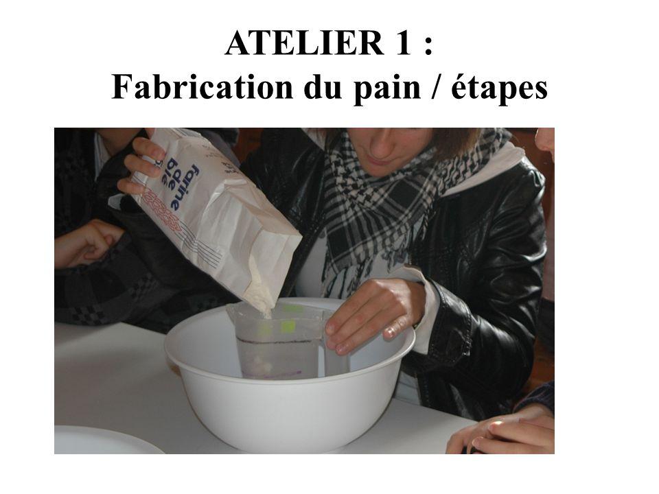 ATELIER 1 : Fabrication du pain / étapes