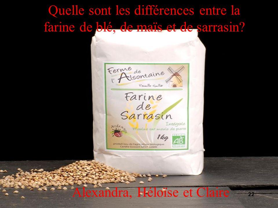 Quelle sont les différences entre la farine de blé, de maïs et de sarrasin.
