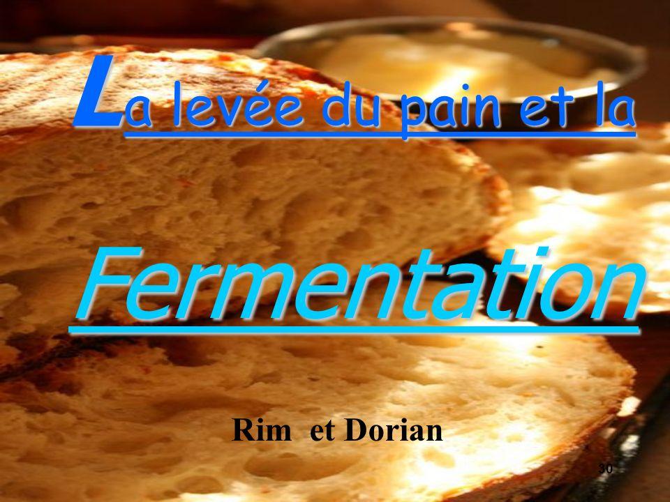 a levée du pain et la LFermentation Rim et Dorian 30