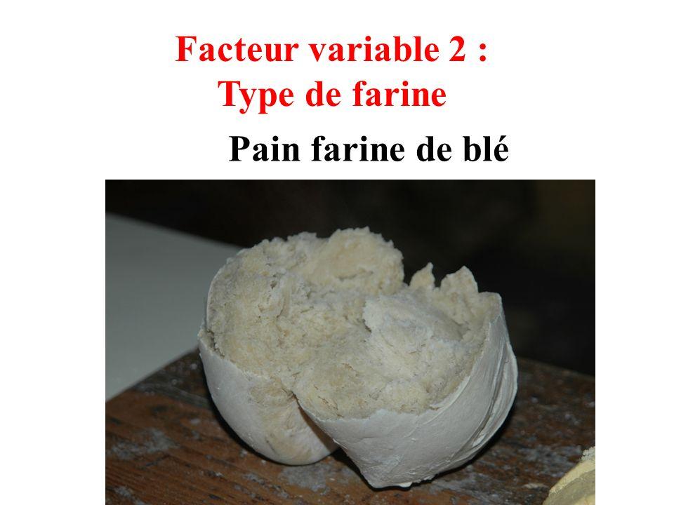 Facteur variable 2 : Type de farine Pain farine de blé