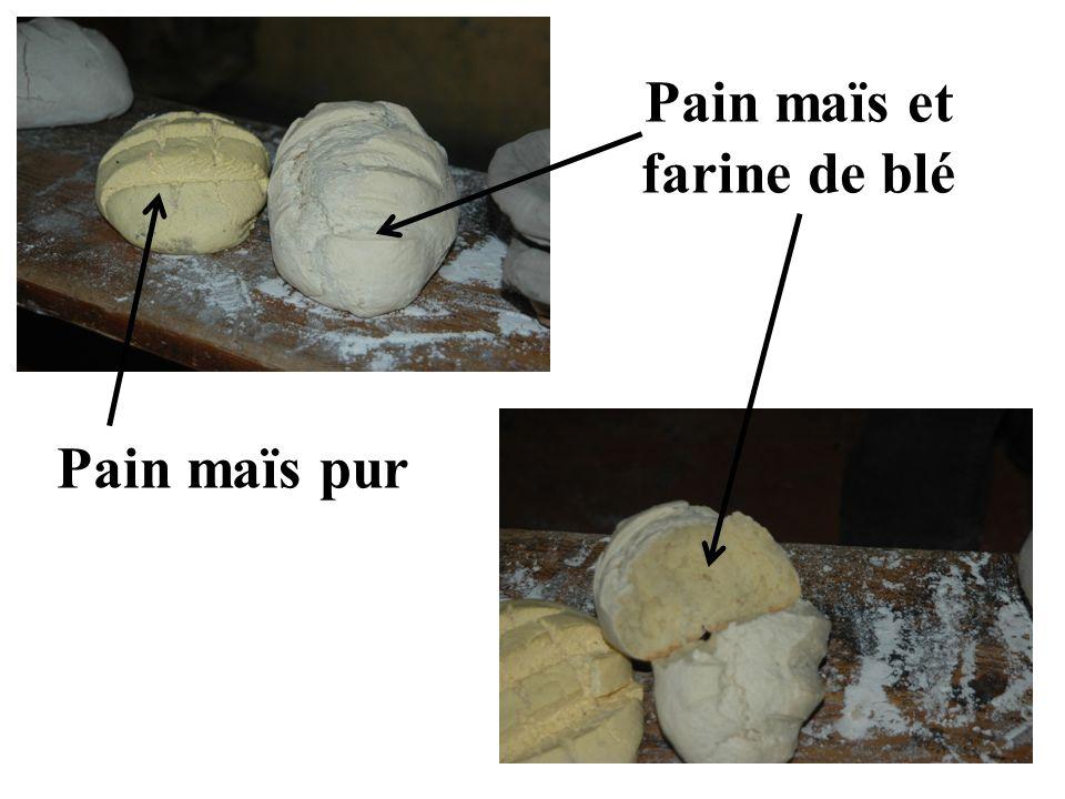 Pain maïs pur Pain maïs et farine de blé