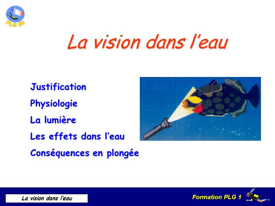 Formation PLG 1 La vision dans leau La vision dans leau JustificationPhysiologie La lumière Les effets dans leau Conséquences en plongée