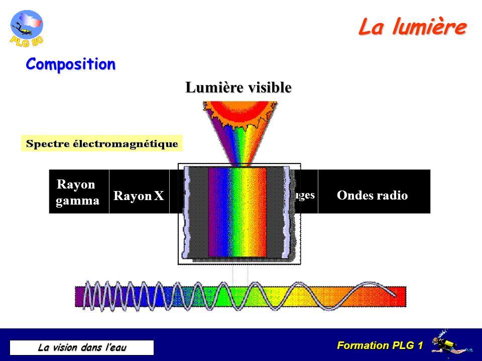 Formation PLG 1 La vision dans leau Ultra violet Rayon X Rayon gamma Infrarouges Ondes radio Composition La lumière Lumière visible