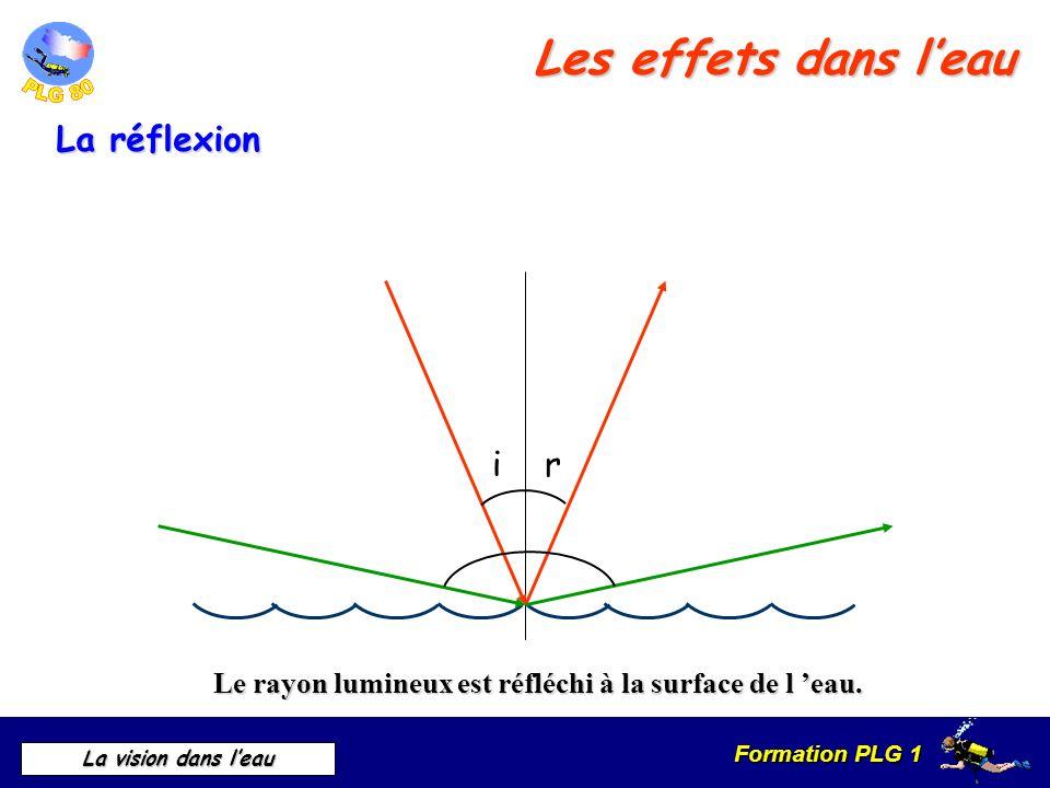 Formation PLG 1 La vision dans leau Le rayon lumineux est réfléchi à la surface de l eau. ir La réflexion Les effets dans leau