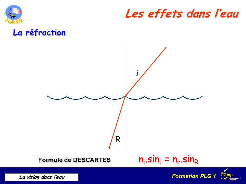 Formation PLG 1 La vision dans leau Formule de DESCARTES n i.sin i = n r.sin R R i Les effets dans leau La réfraction