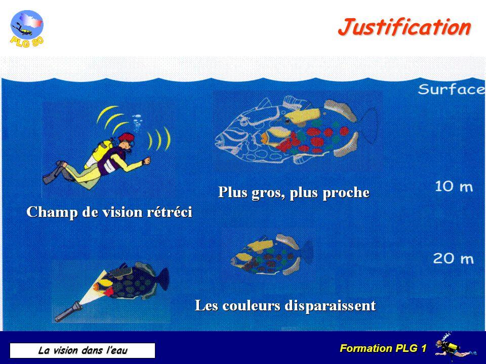 Formation PLG 1 La vision dans leau Ne pas remuer le fond Application en plongée La diffusion