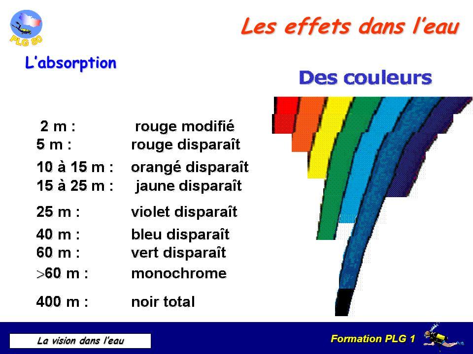 Formation PLG 1 La vision dans leau Les effets dans leau Labsorption