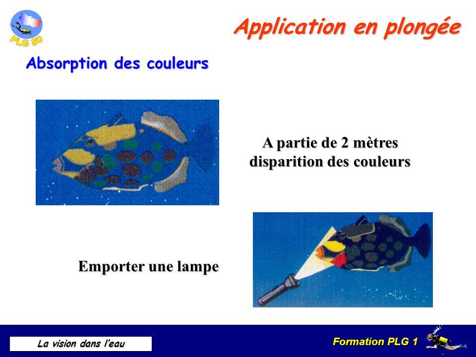 Formation PLG 1 La vision dans leau Application en plongée Absorption des couleurs Emporter une lampe A partie de 2 mètres disparition des couleurs