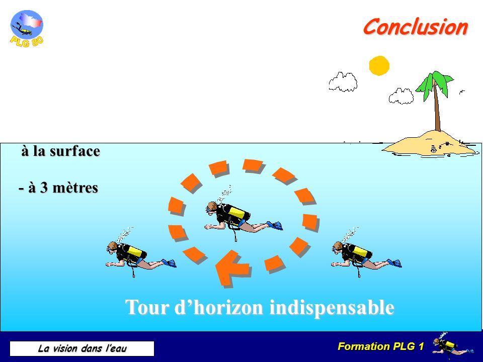 Formation PLG 1 La vision dans leau Tour dhorizon indispensable Conclusion à la surface à la surface - à 3 mètres
