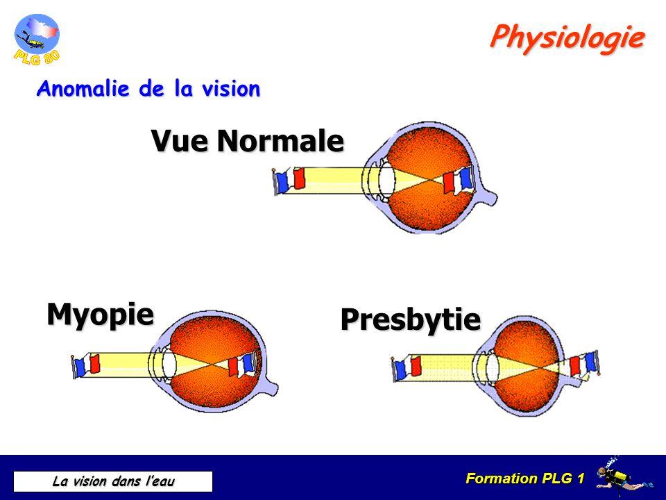 Formation PLG 1 La vision dans leau Physiologie Anomalie de la vision Vue Normale Myopie Presbytie