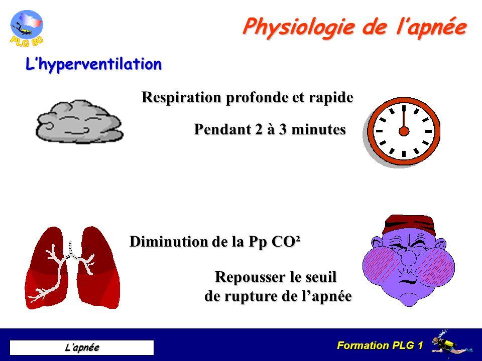 Formation PLG 1 Lapnée Lhyperventilation Physiologie de lapnée Respiration profonde et rapide Diminution de la Pp CO² Pendant 2 à 3 minutes Repousser