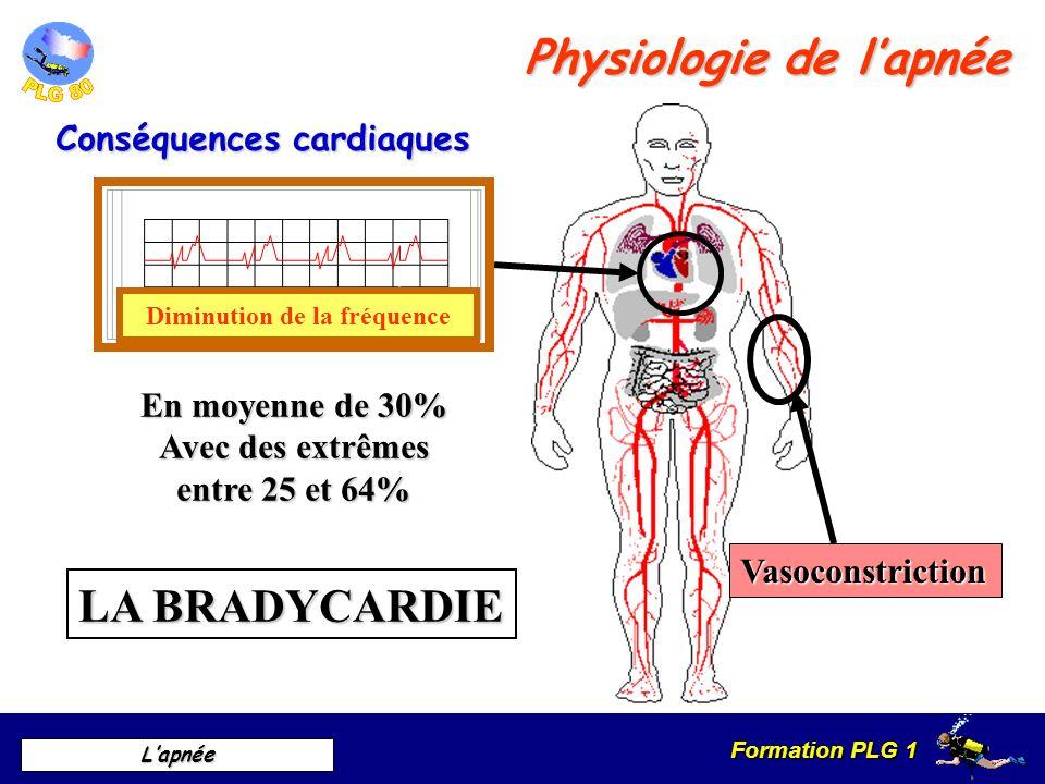 Formation PLG 1 Lapnée Conséquences cardiaques Physiologie de lapnée LA BRADYCARDIE Vasoconstriction Diminution de la fréquence En moyenne de 30% Avec