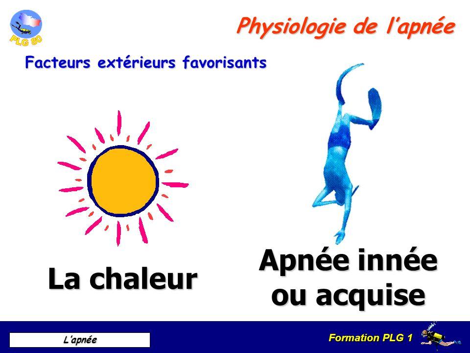 Formation PLG 1 Lapnée Facteurs extérieurs favorisants Physiologie de lapnée La chaleur Apnée innée ou acquise