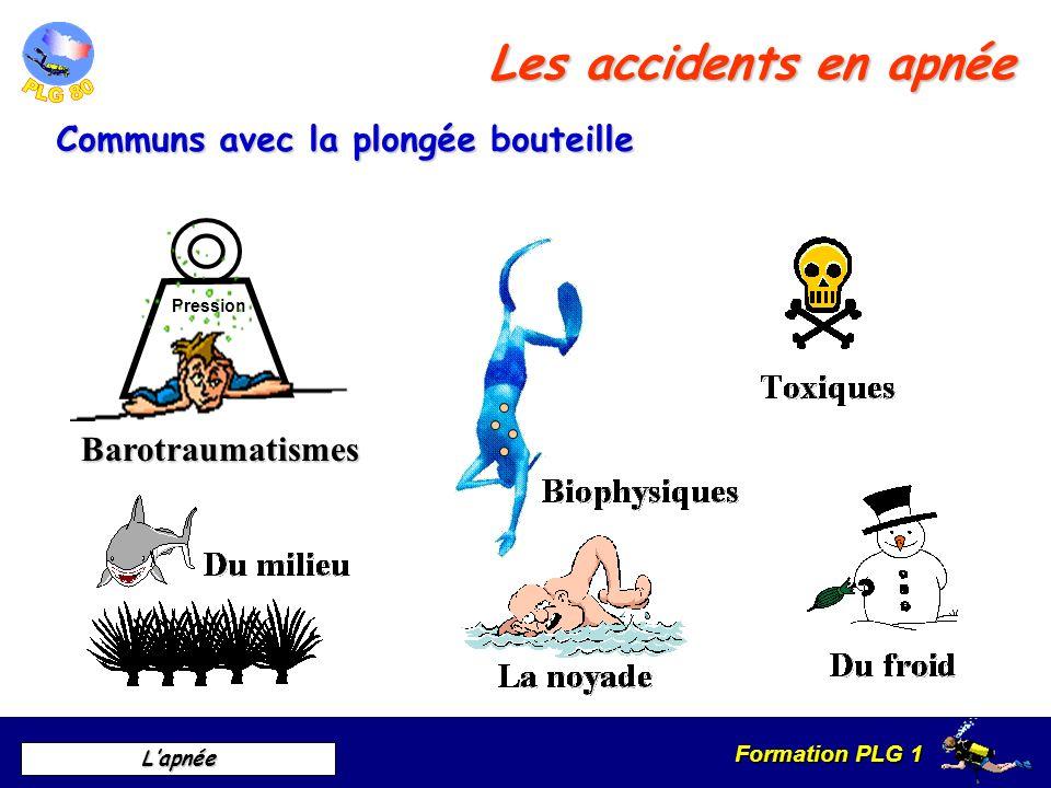 Formation PLG 1 Lapnée Les accidents en apnée Pression Barotraumatismes Communs avec la plongée bouteille