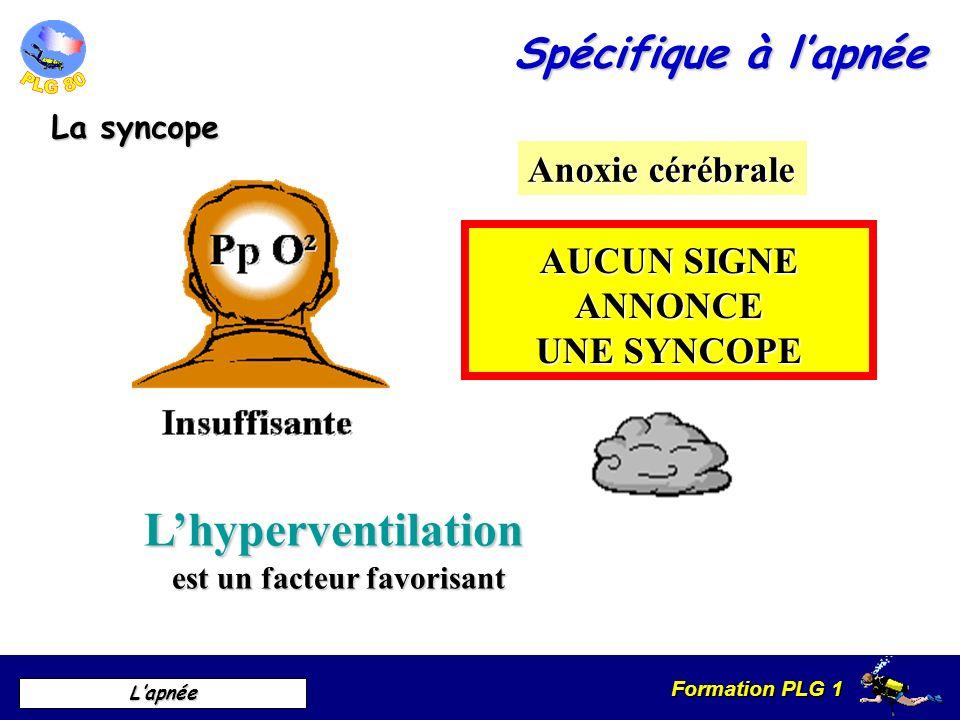 Formation PLG 1 Lapnée Spécifique à lapnée La syncope Anoxie cérébrale AUCUN SIGNE ANNONCE UNE SYNCOPE Lhyperventilation est un facteur favorisant