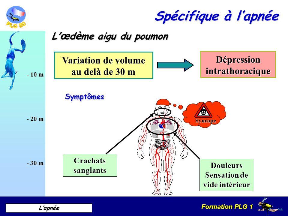 Formation PLG 1 Lapnée - 10 m - 20 m - 30 m L œ d è me aigu du poumon Variation de volume au delà de 30 m Dépression intrathoracique Symptômes Syncope