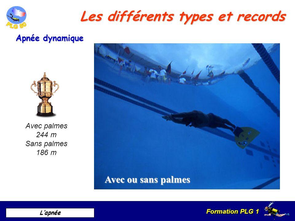 Formation PLG 1 Lapnée Les différents types et records Apnée poids constant Avec ou sans palmes Avec palmes 112 m Sans palmes 86 m