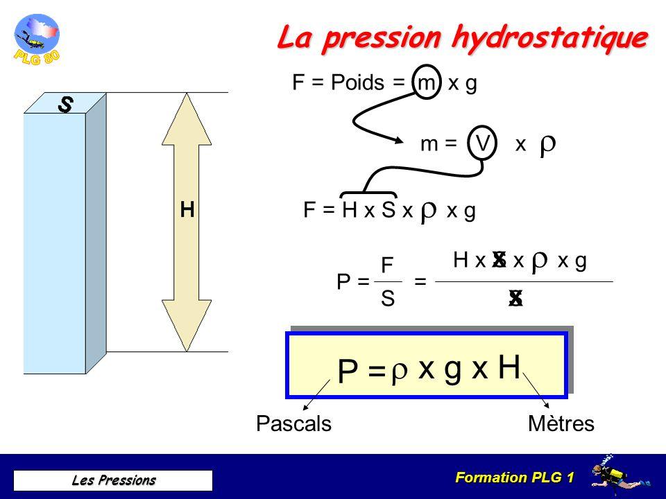 Formation PLG 1 Les Pressions La pression hydrostatique F = Poids = m x g m = V x F = H x S x x g P = F S= H x S x x g S X X P = x g x H Pascals Mètre