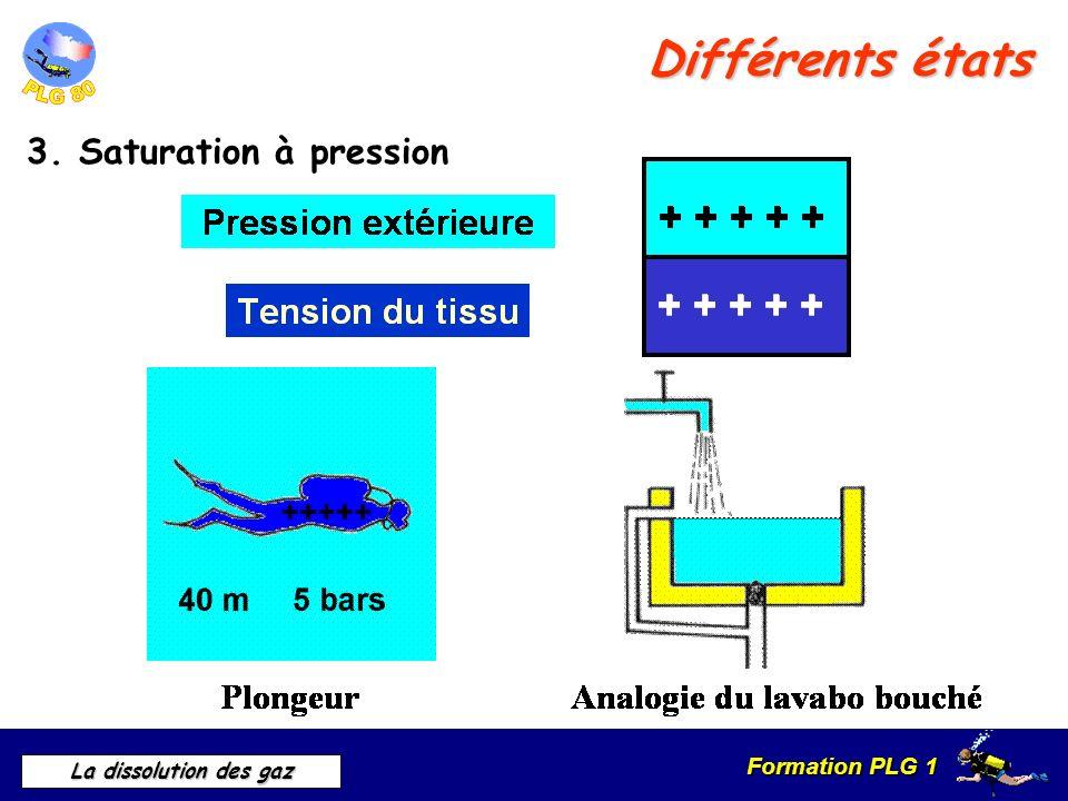 Formation PLG 1 La dissolution des gaz Différents états 3. Saturation à pression