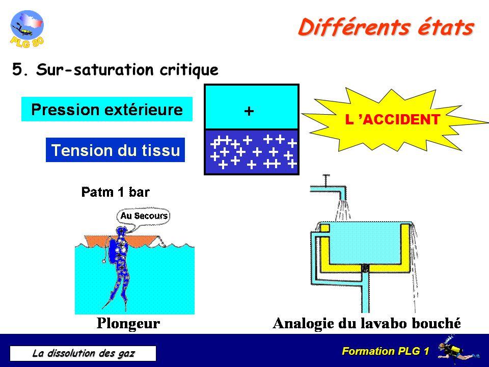 Formation PLG 1 La dissolution des gaz Différents états 5. Sur-saturation critique L ACCIDENT