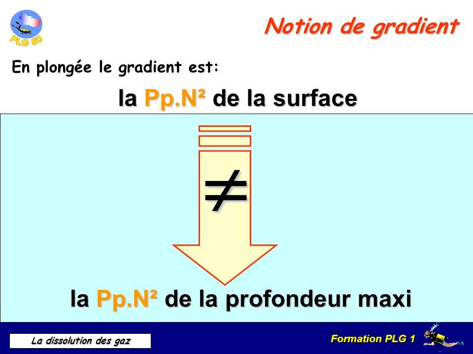 Formation PLG 1 La dissolution des gaz Notion de gradient En plongée le gradient est: la Pp.N² de la surface la Pp.N² de la profondeur maxi