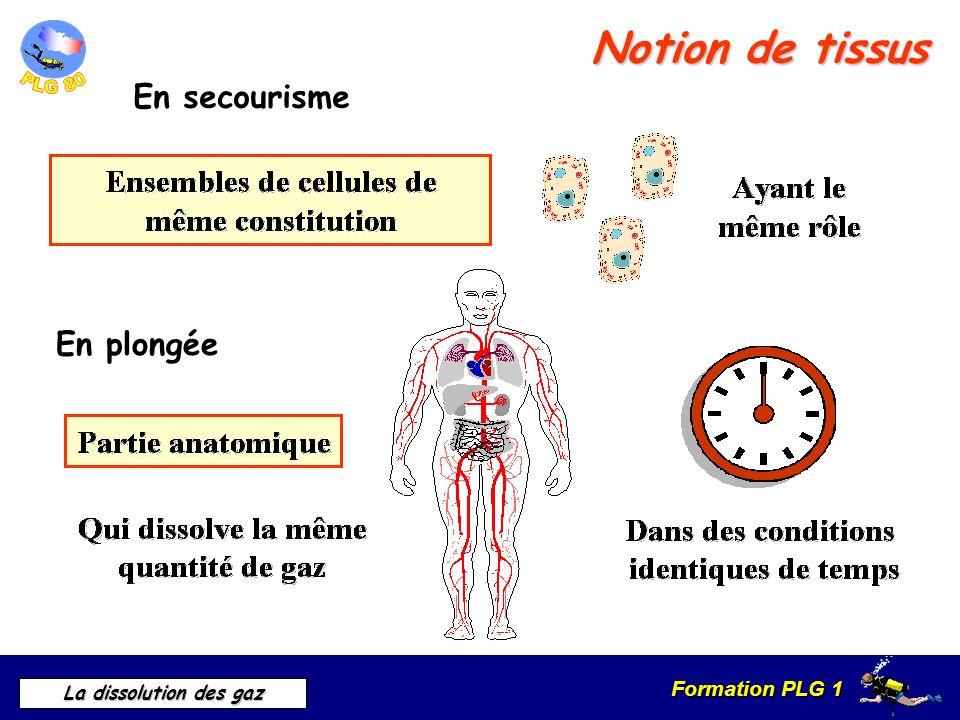 Formation PLG 1 La dissolution des gaz Notion de tissus En secourisme En plongée