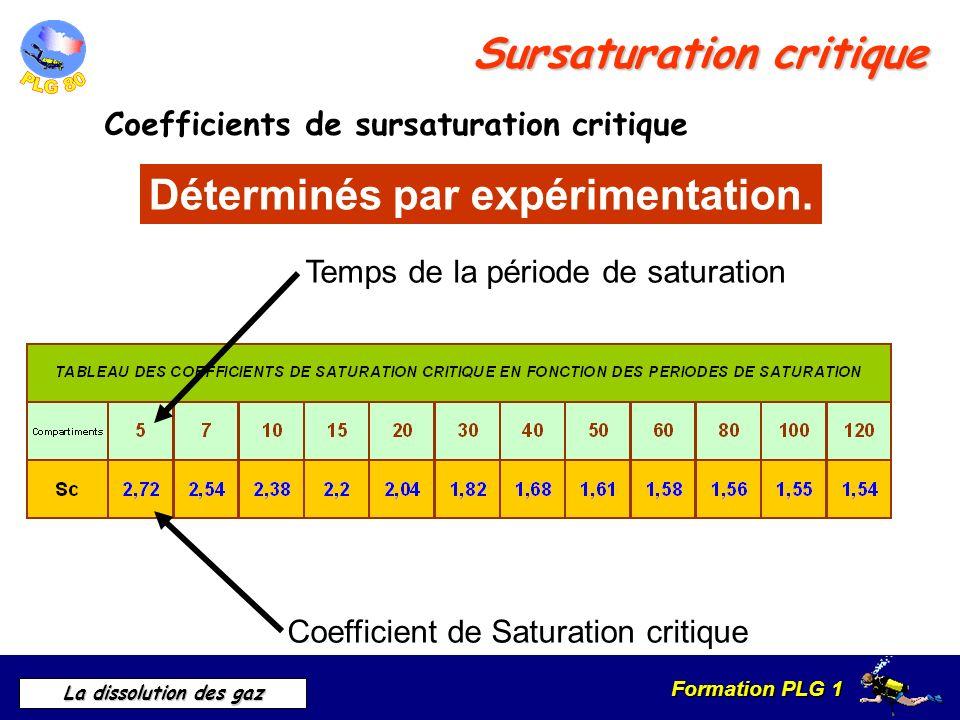 Formation PLG 1 La dissolution des gaz Sursaturation critique Coefficients de sursaturation critique Déterminés par expérimentation. Coefficient de Sa