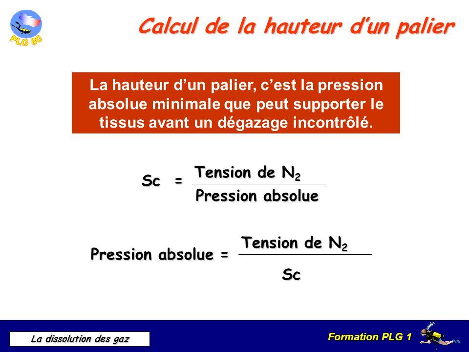 Formation PLG 1 La dissolution des gaz Calcul de la hauteur dun palier Sc = Tension de N 2 Pression absolue La hauteur dun palier, cest la pression ab