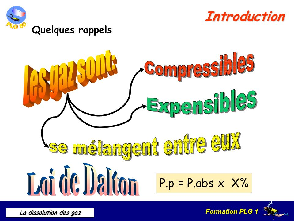 Formation PLG 1 La dissolution des gaz Introduction Quelques rappels P.p = P.abs x X%
