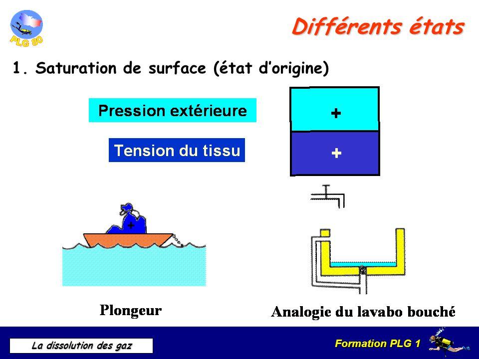 Formation PLG 1 La dissolution des gaz Différents états 1. Saturation de surface (état dorigine)