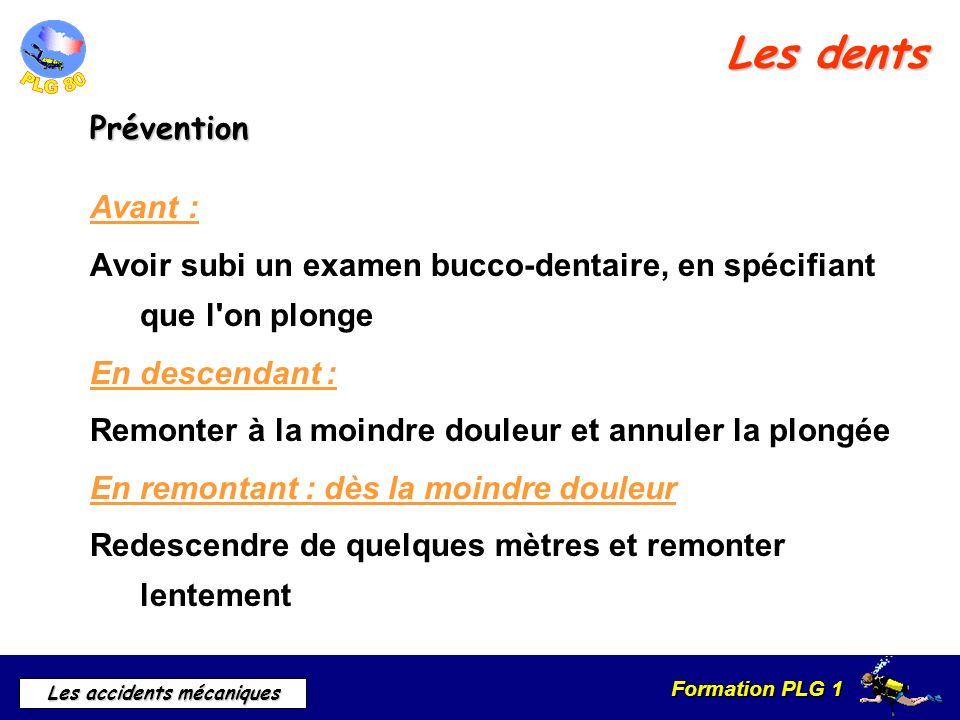 Formation PLG 1 Les accidents mécaniques Les dents Prévention Avant : Avoir subi un examen bucco-dentaire, en spécifiant que l'on plonge En descendant