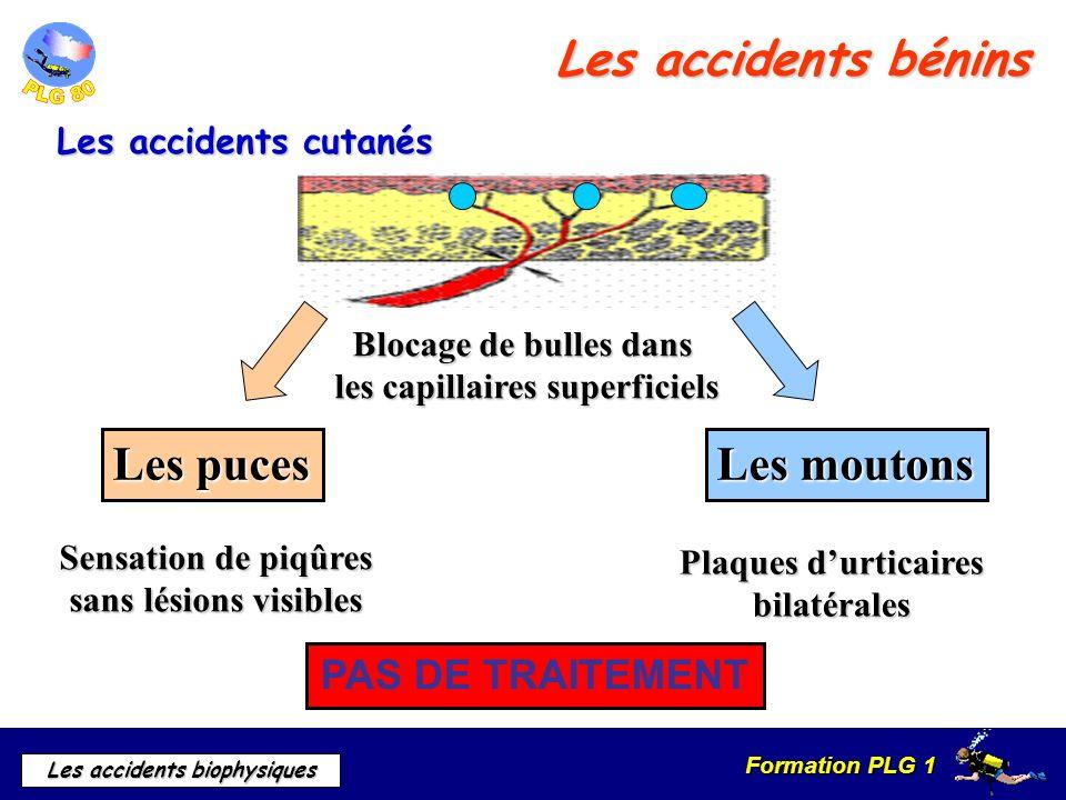 Formation PLG 1 Les accidents biophysiques Les accidents bénins Les accidents cutanés Blocage de bulles dans les capillaires superficiels Les moutons