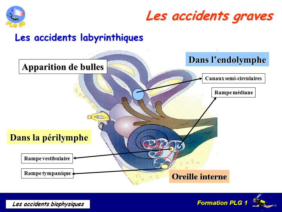 Formation PLG 1 Les accidents biophysiques Les accidents graves Les accidents labyrinthiques Apparition de bulles Dans lendolymphe Canaux semi-circula