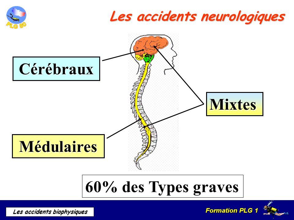 Formation PLG 1 Les accidents biophysiques 60% des Types graves Cérébraux Médulaires Mixtes Les accidents neurologiques