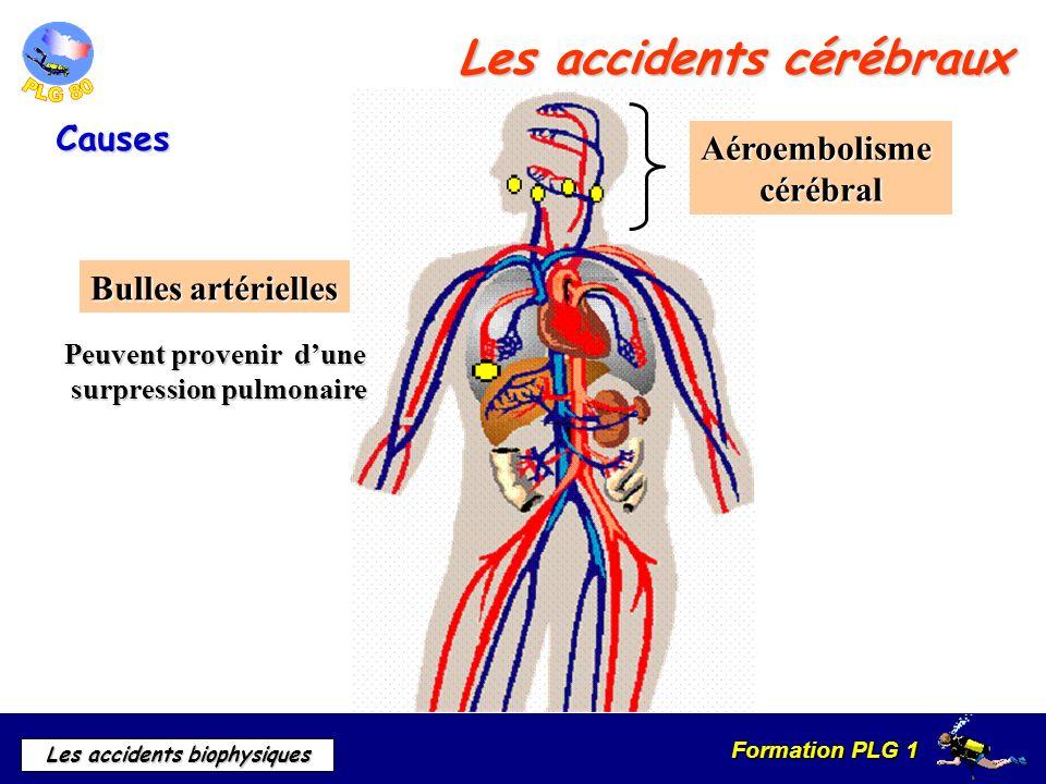 Formation PLG 1 Les accidents biophysiques Les accidents cérébraux Causes Bulles artérielles Peuvent provenir dune surpression pulmonaire Aéroembolism