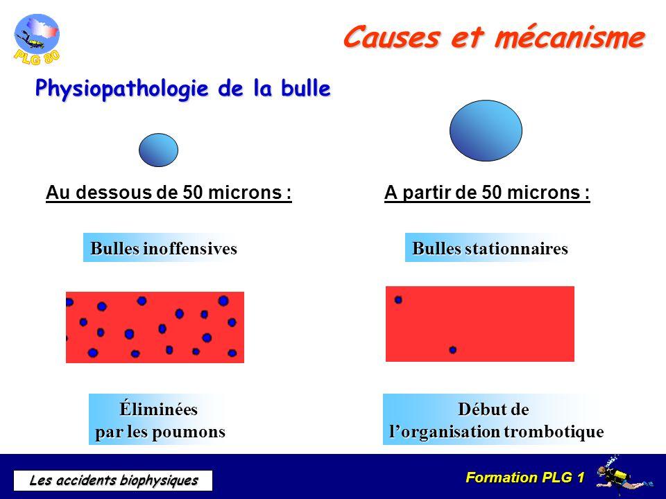 Formation PLG 1 Les accidents biophysiques Causes et mécanisme Physiopathologie de la bulle Au dessous de 50 microns :A partir de 50 microns : Bulles