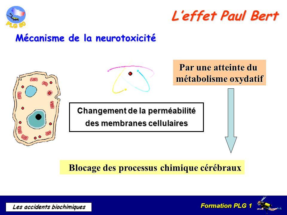 Formation PLG 1 Les accidents biochimiques Leffet Paul Bert Mécanisme de la neurotoxicité Changement de la perméabilité des membranes cellulaires Par