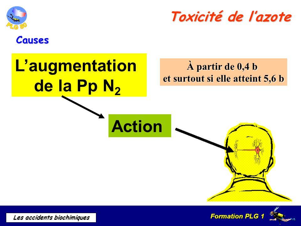Formation PLG 1 Les accidents biochimiques Toxicité de lazote Causes Laugmentation de la Pp N 2 À partir de 0,4 b et surtout si elle atteint 5,6 b Act