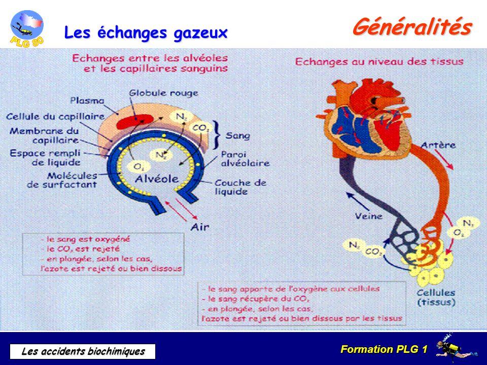 Formation PLG 1 Les accidents biochimiques Signes et symptômes Toxicité du CO² à 1 bar de pression atmosphérique 2% de C02 dans l air est insensible en surface mais a des conséquences en plongée.