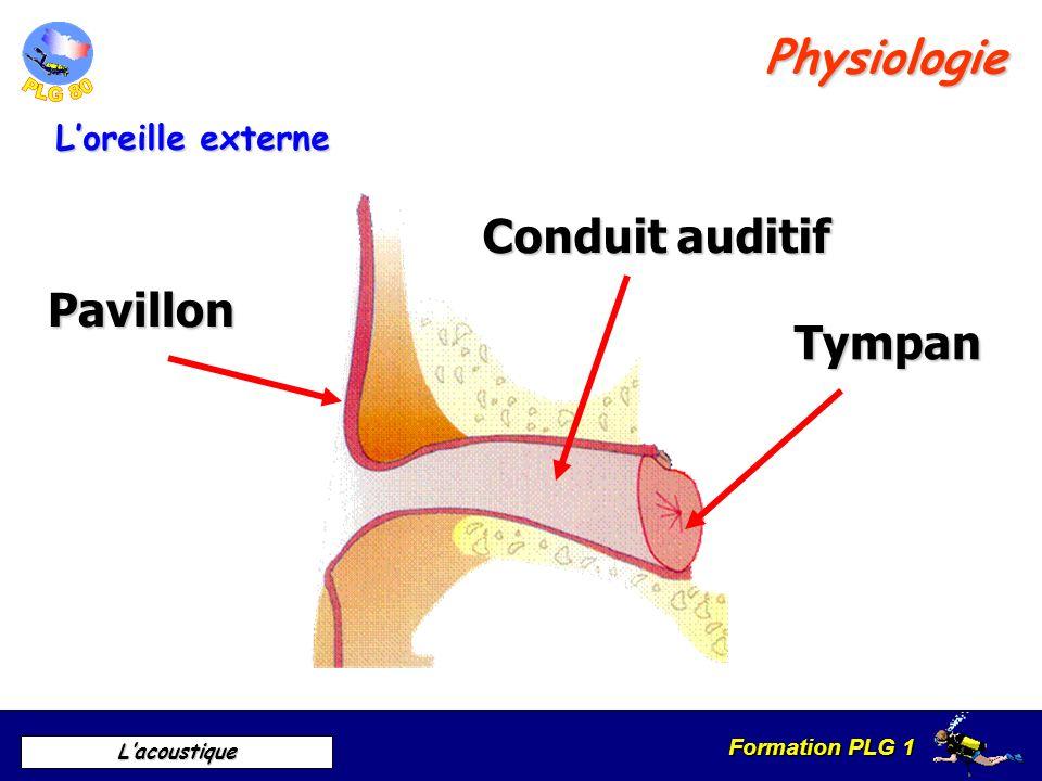 Formation PLG 1 Lacoustique Le marteau Lenclume Étrier La trompe dEustache Physiologie Loreille moyenne