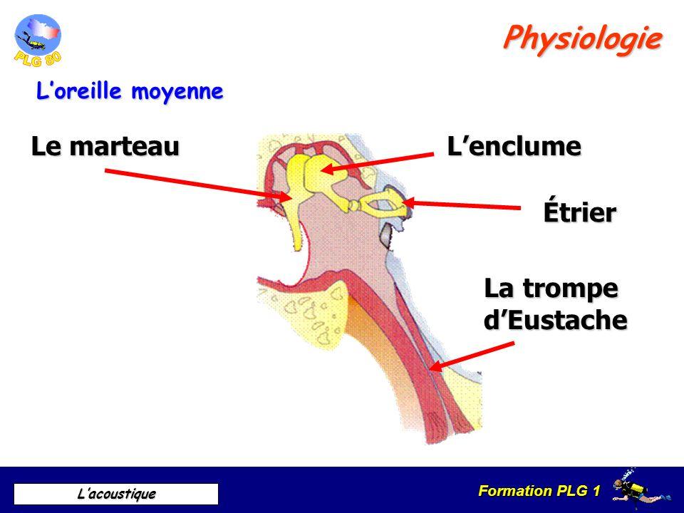 Formation PLG 1 Lacoustique Différences air / eau Perception des sons