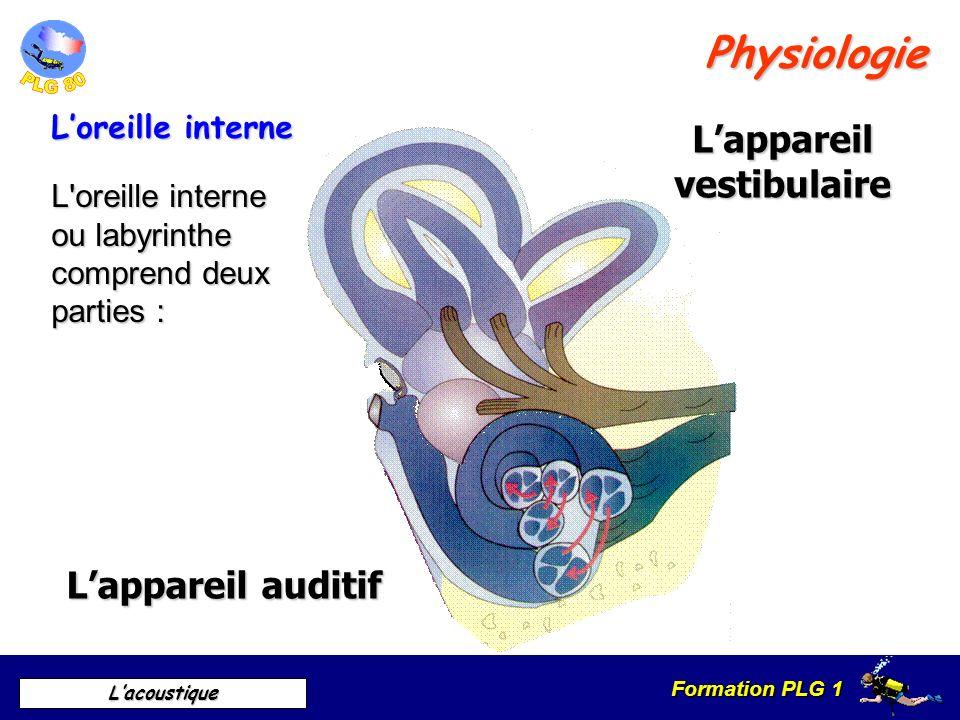 Formation PLG 1 Lacoustique = la sensation sonore saffaiblit avec la distance Différences air / eau Absorption des sons