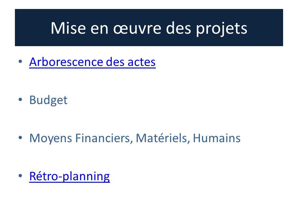 Mise en œuvre des projets Arborescence des actes Budget Moyens Financiers, Matériels, Humains Rétro-planning