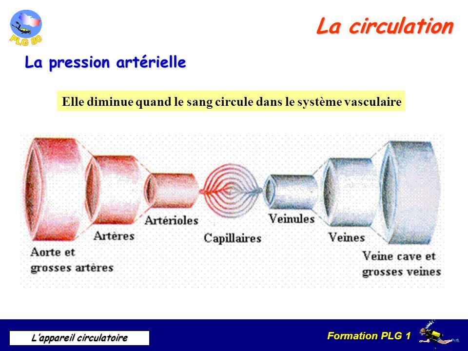 Formation PLG 1 Lappareil circulatoire La circulation La pression artérielle Elle diminue quand le sang circule dans le système vasculaire