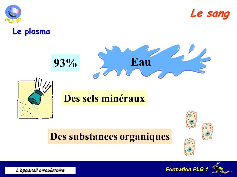 Formation PLG 1 Lappareil circulatoire Le sang Le plasma 93% Eau Des sels minéraux Des substances organiques